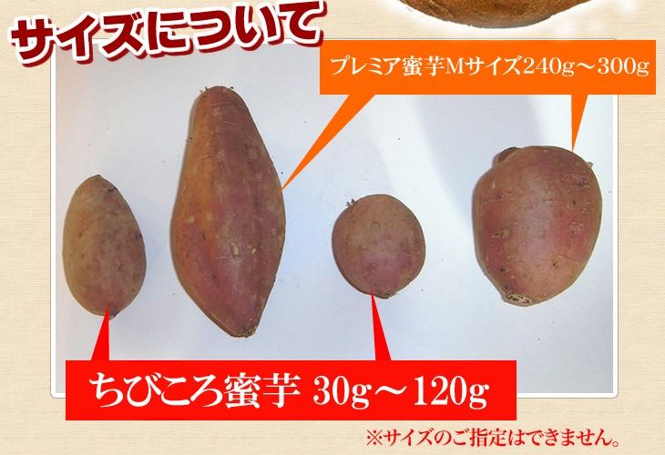 サイズについて プレミア蜜芋Mサイズ240g〜300g ちびころ蜜芋30g〜120g
