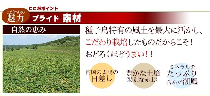 素材 種子島特有の風土を最大に活かし、こだわり栽培したものだからこそ!おどろくほどうまい!!