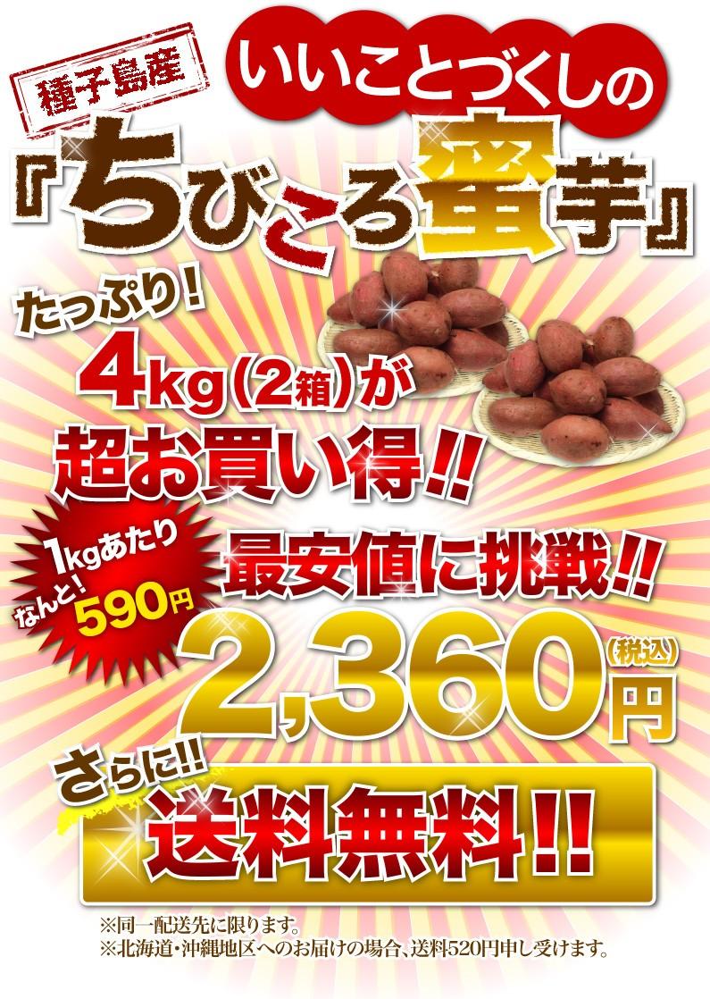 いいことづくしの種子島産『ちびころ蜜芋』たっぷり!4kg(2箱)が超お買い得!!1kgあたりなんと!500円 さらに送料無料!!