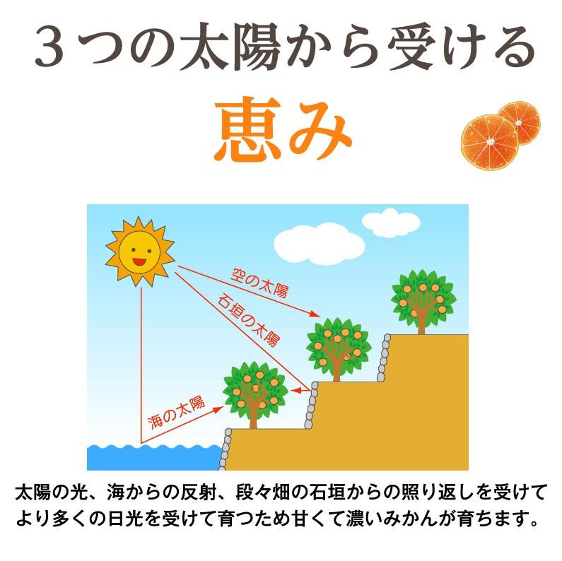 3つの太陽から受ける恵み