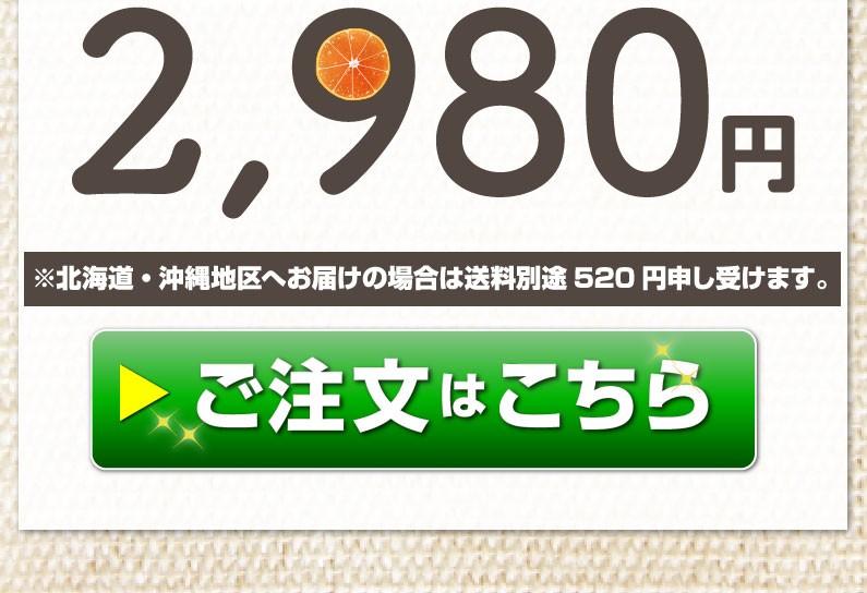 2980円 ご注文はこちら