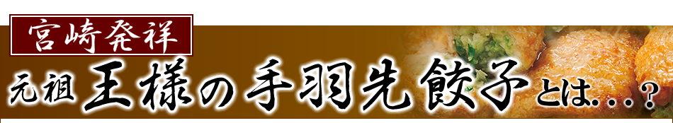 宮崎発祥 元祖王様の手羽先餃子とは??