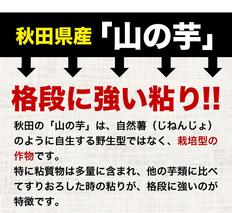 秋田県産「山の芋」格段に強い粘り!!