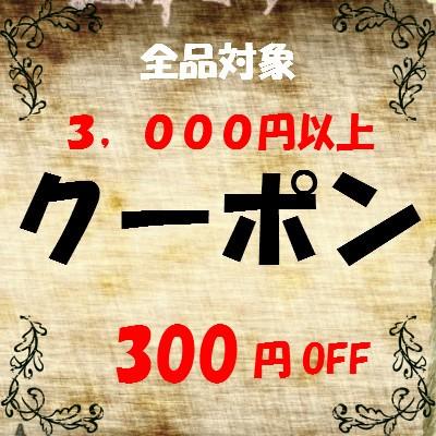 全品対象!300円OFFクーポン!