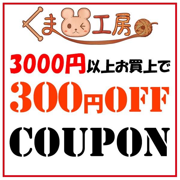 【期間限定】3000円以上お買い上げで300円OFFクーポン!【3/25迄】
