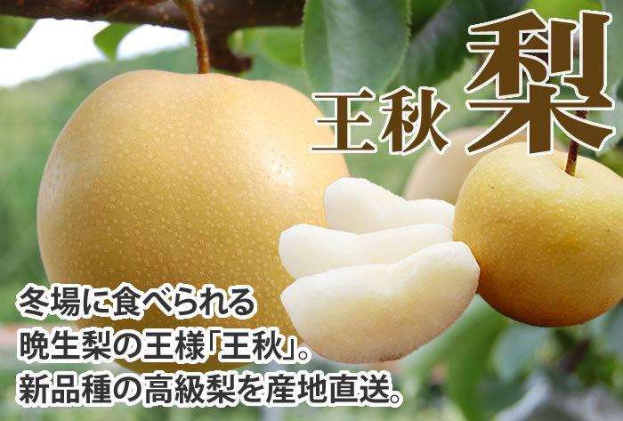 熊本県産 梨