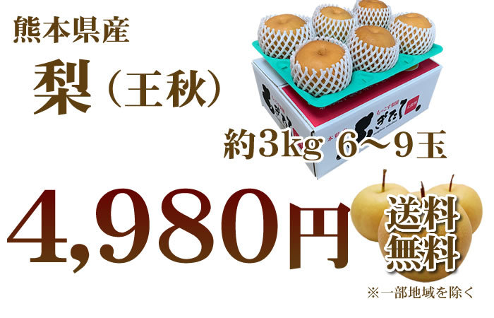 3kg4980円