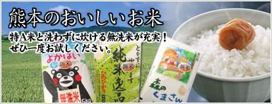 熊本のおいしいお米