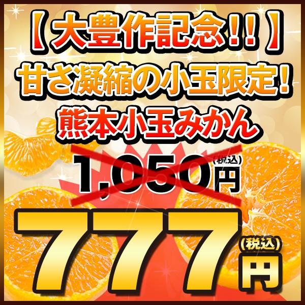 【大豊作クーポン】1,050円→衝撃の777円送料無料!
