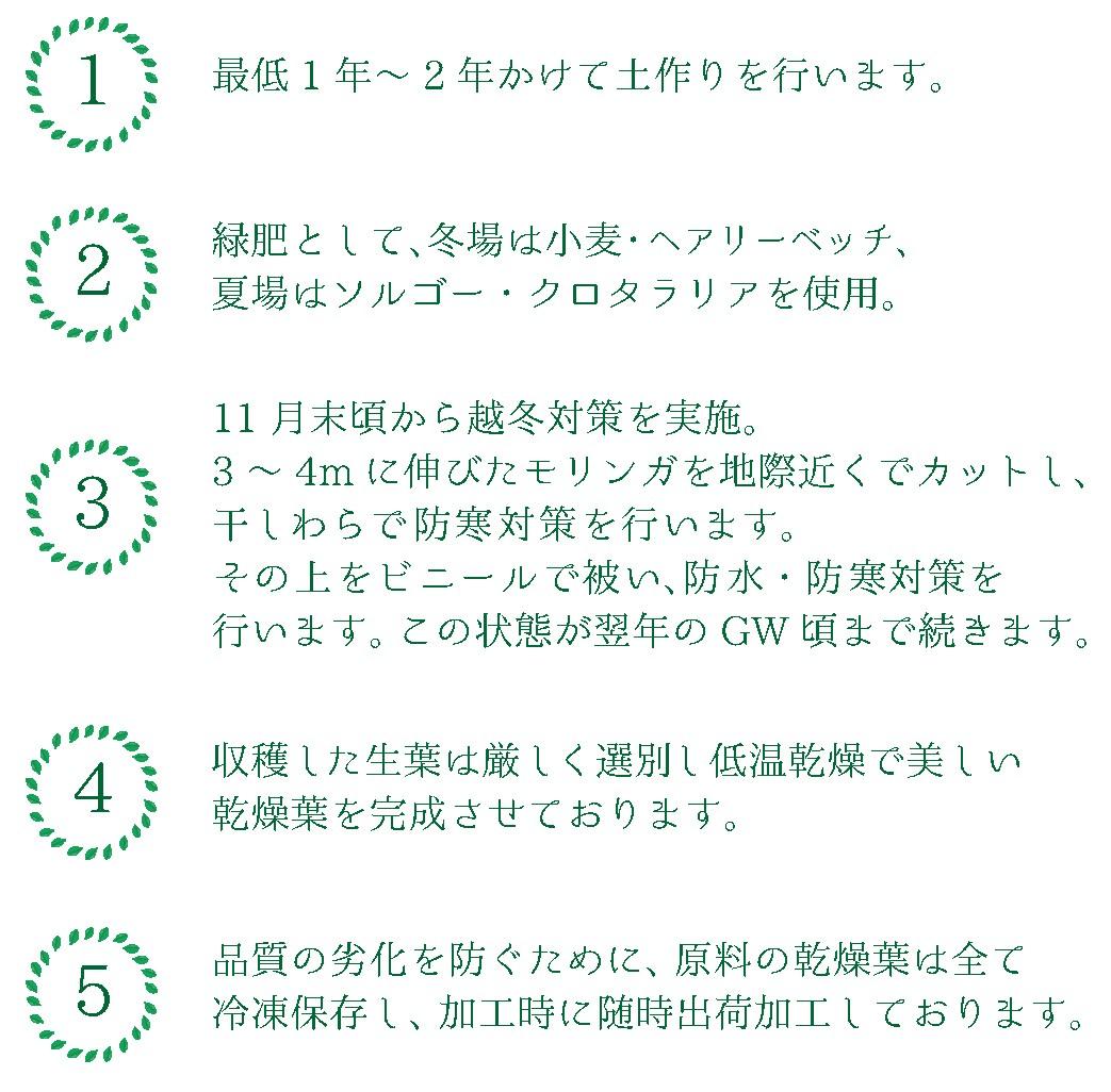 自然栽培・露地栽培・越冬株2