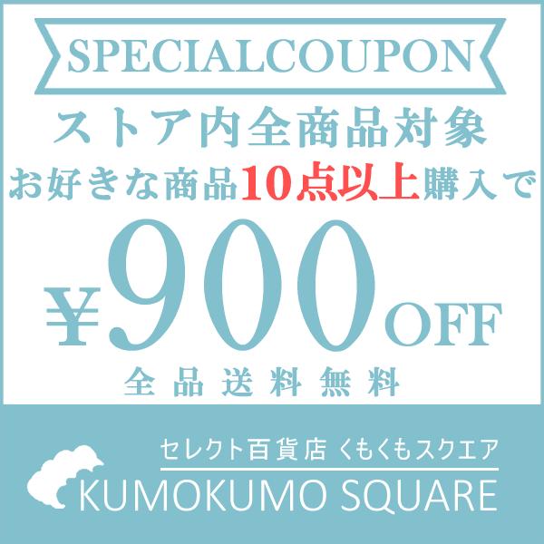 10点以上購入で900円OFF!