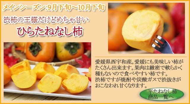 ひらたねなし柿(平核無柿)