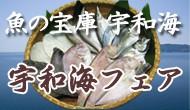 魚の宝庫宇和海