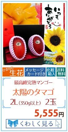 タマゴ2L2玉&花