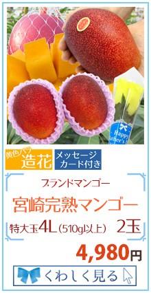 マンゴー4L2玉&造花