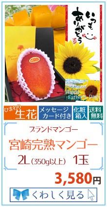 マンゴー2L1玉&生花