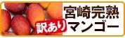 【訳あり】宮崎マンゴー