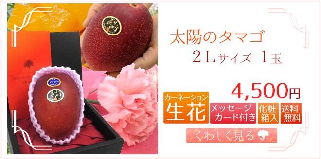 タマゴ2L1玉&生花
