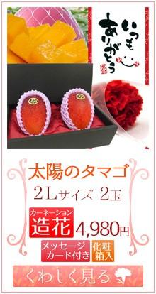 タマゴ2L2玉&造花