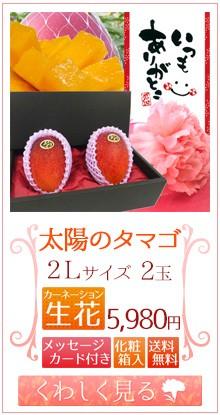 タマゴ2L2玉&生花