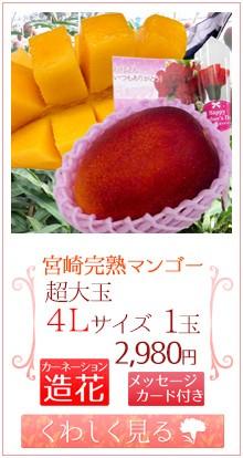マンゴー4L1玉&造花