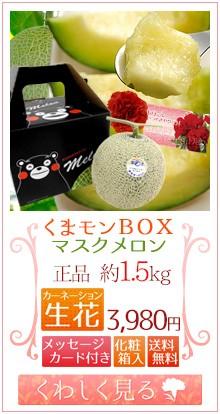 くまモンメロン1玉&生花