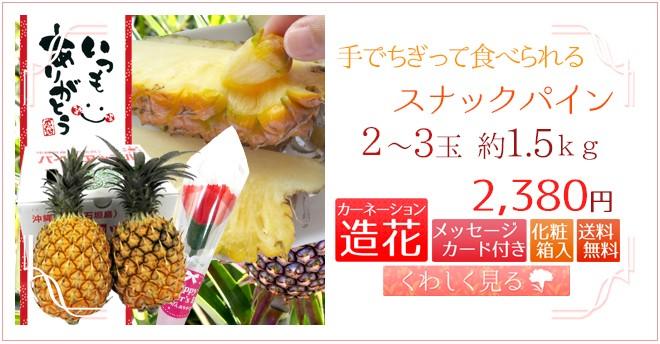 スナックパイン2〜3玉&造花