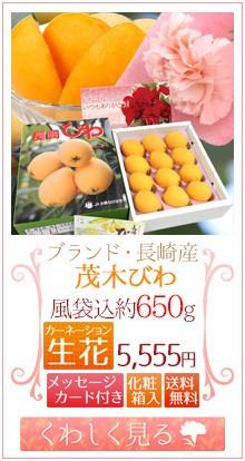 茂木びわ化粧箱&生花