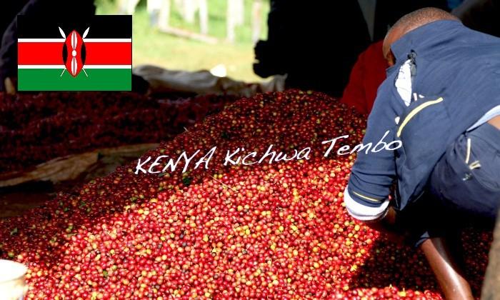 ケニア・キッチャテンボ