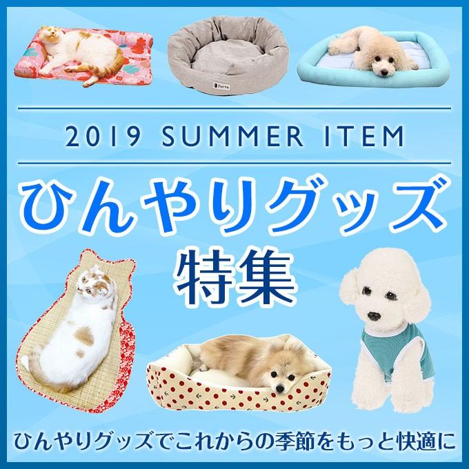 2019 SUMMER ITEM ひんやりグッズ特集!