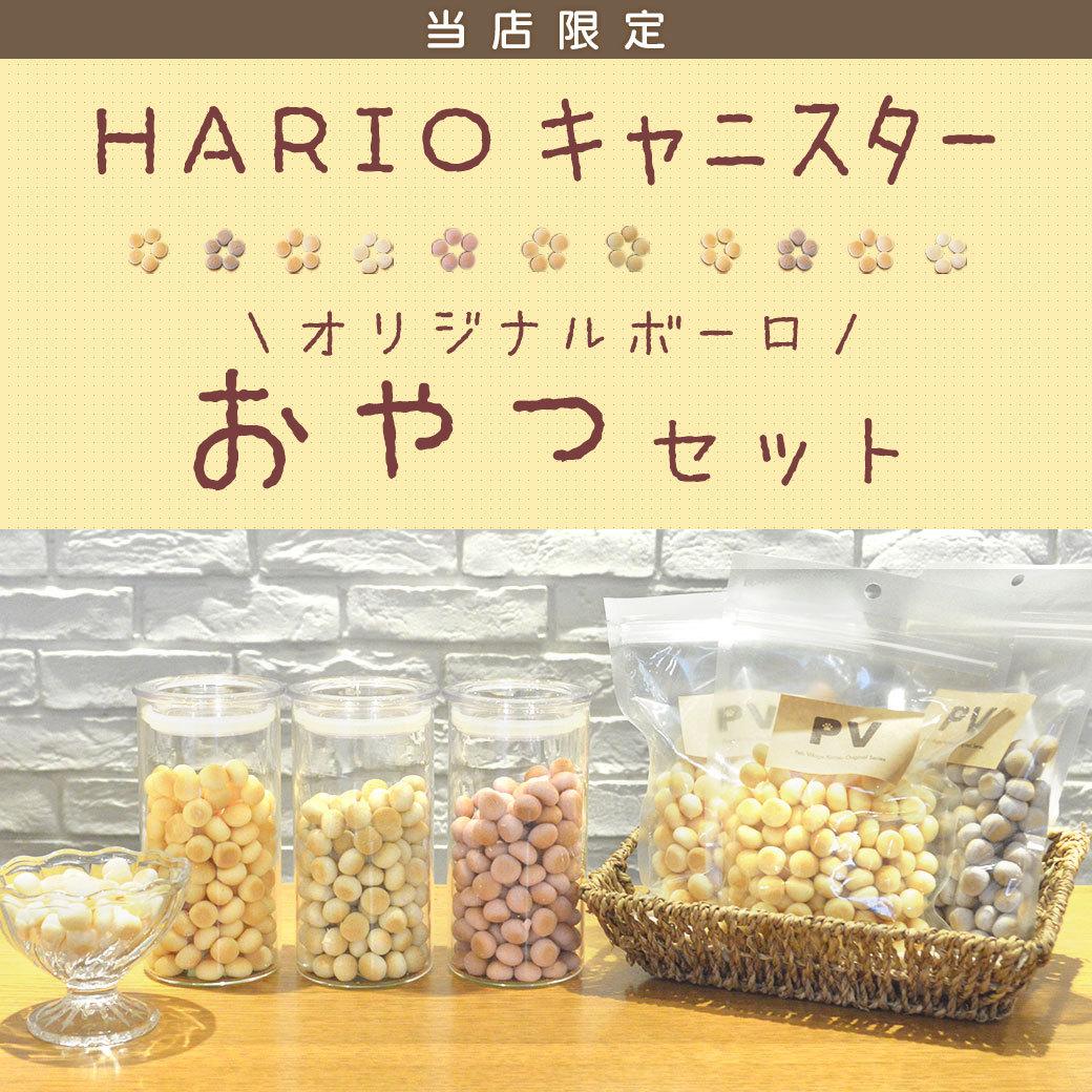 HARIO スキニーキャニスターセット