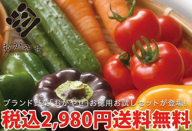 ブランド野菜おがやせお試しセット