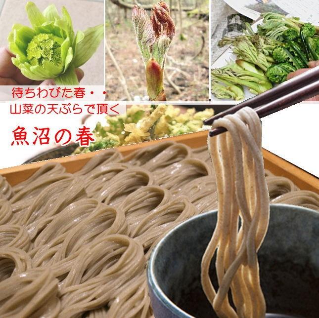 春山菜の天ぷらとそば