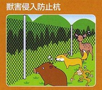 害獣侵入防止柵の杭打ちに