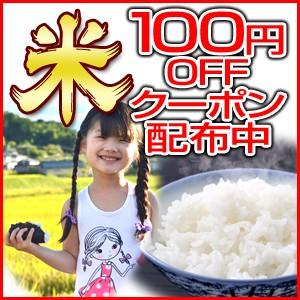 期間限定【全商品対象】お買いものに使える100円引きクーポン!産直通販・おいしいお米は京米堂