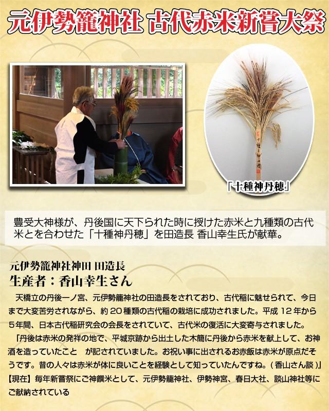豊受大神様が、丹後国に天下られた時に授けた赤米と九種類の古代米とを合わせた「十種神丹穂」を田造長 香山幸生氏が献華。天橋立の丹後一ノ宮、元伊勢籠神社の田造長をされており、古代稲に魅せられて、今日まで大変苦労されながら、約20種類の古代稲の栽培に成功されました。平成12年から5年間、日本古代稲研究会の会長をされていて、古代米の復活に大変寄与されました。『丹後は赤米の発祥の地で、平城京跡から出土した木簡に丹後から赤米を献上して、お神酒を造っていたこと が記されていました。お祝い事に出されるお赤飯は赤米が原点だそうです。昔の人々は赤米が体に良いことを経験として知っていたんですね。(香山さん談)』【現在】毎年新嘗祭にご神饌米として、元伊勢籠神社、伊勢神宮、春日大社、談山神社等にご献納されている )