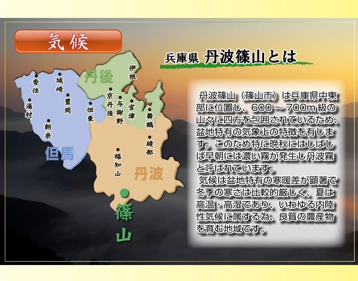 丹波篠山(篠山市)は兵庫県中東部に位置し、600〜700m級の山々に四方を包囲されているため、盆地特有の気象上の特徴を有します。このため特に晩秋にはしばしば早朝には濃い霧が発生し丹波霧と呼ばれています。 気候は盆地特有の寒暖差が顕著で冬季の寒さは比較的厳しく、夏は高温・高湿であり、いわゆる内陸性気候に属する為、良質の農産物を育む地域です。