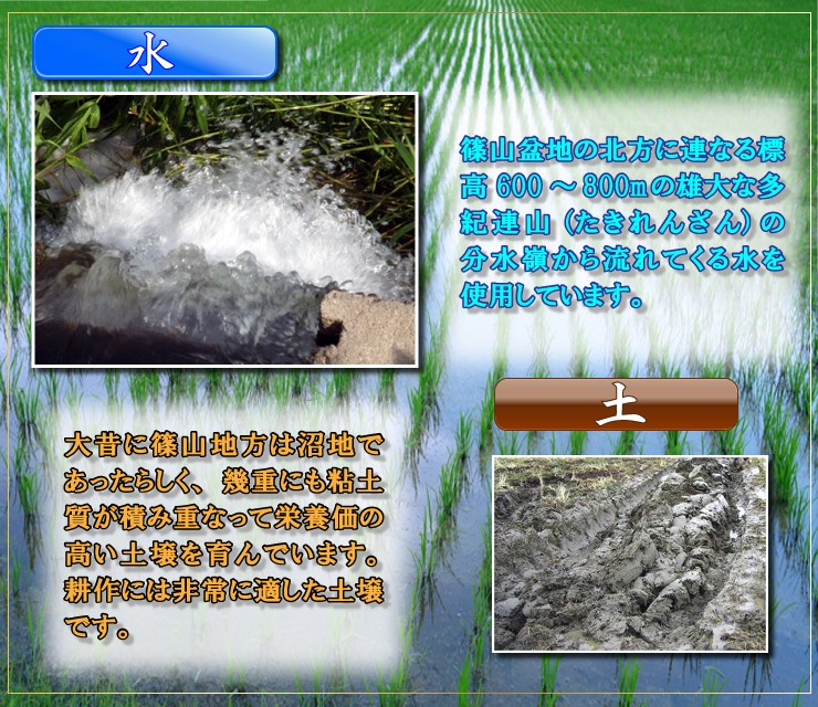 水・篠山盆地の北方に連なる標高600〜800mの雄大な多紀連山(たきれんざん)の分水嶺から流れてくる水を使用しています。alt=