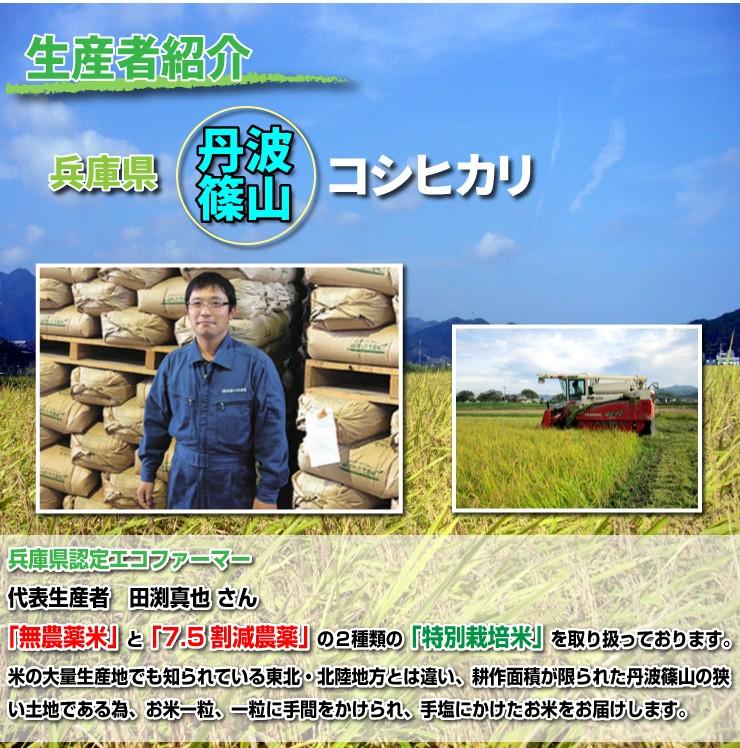 生産者紹介・兵庫県丹波篠山コシヒカリ兵庫県認定エコファーマー代表生産者田渕真也さん「無農薬米」と「7.5割減農薬」の2種類の「特別栽培米」を取り扱っております。米の大量生産地でも知られている東北・北陸地方とは違い、耕作面積が限られた丹波篠山の狭い土地である為、お米一粒、一粒に手間をかけられ、手塩にかけたお米をお届けします。