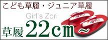 22.0cm-