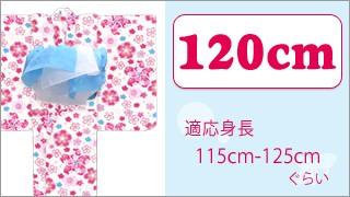 120サイズ