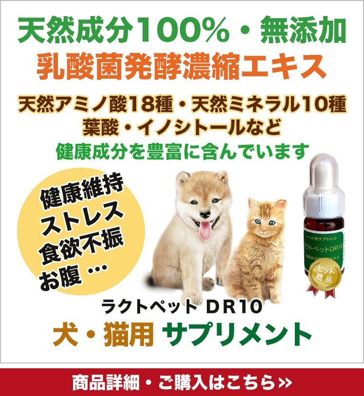 犬・猫用サプリメント - ラクトペットDR10