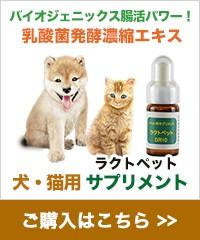 犬・猫用サプリメント - ラクトペット