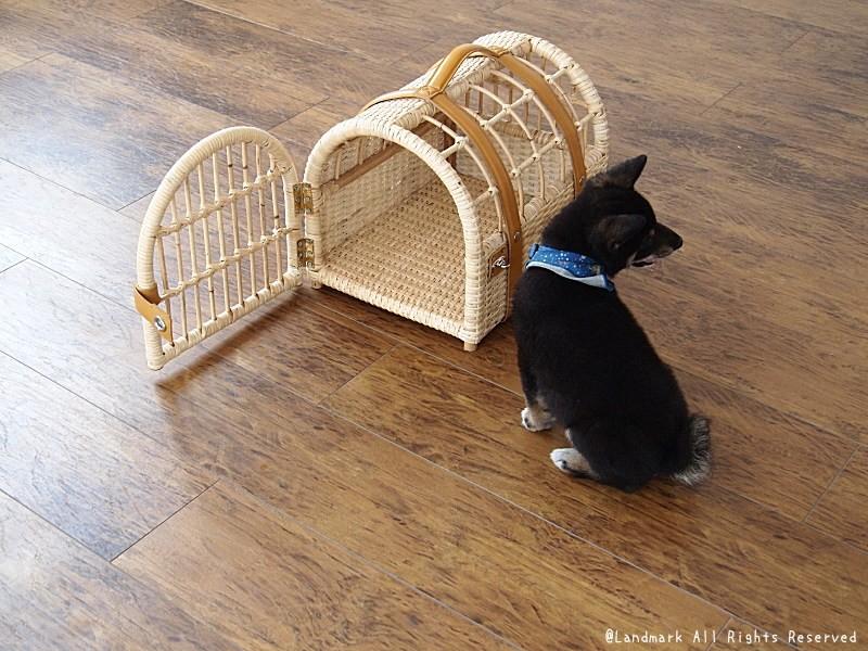 子犬、猫、ペットのおうちに。ラタン製のナチュラルでクラシックなおしゃれなペットハウス