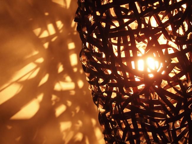 ライトを灯すと溢れ出す木漏れ日の光