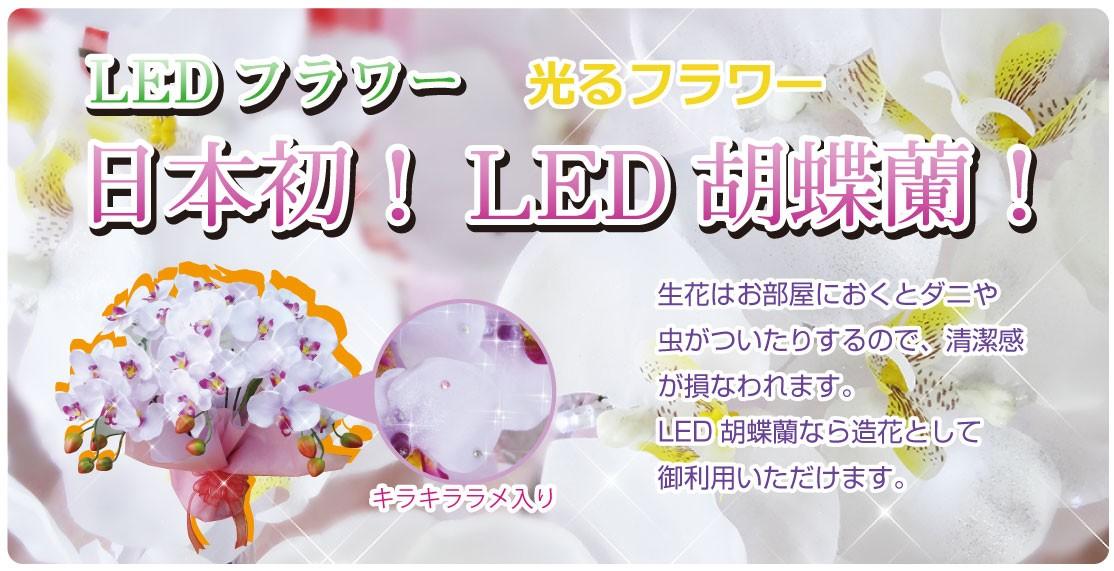 LED胡蝶蘭