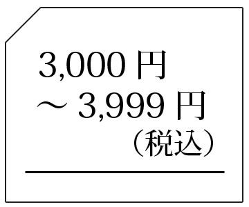 3000-3999円