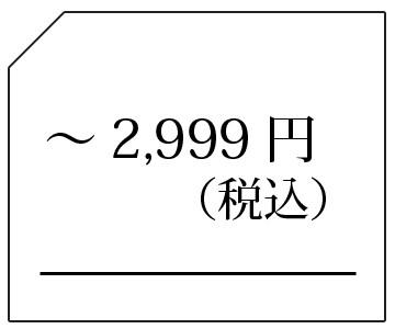 -2999円