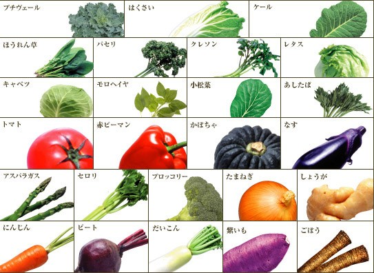 原材料:トマト、にんじん、メキャベツ(プチヴェール)、はくさい、赤ピーマン、アスパラガス、ケール、セロリ、ほうれん草、ブロッコリー、パセリ、クレソン、たまねぎ、レタス、キャベツ、モロヘイヤ、かぼちゃ、ビート、だいこん、小松菜、しょうが、紫いも、あしたば、なす、ごぼう、レモン果汁