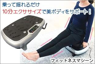 ライフフィットトレーナー2Way 全身のバランス運動+筋トレ+有酸素運動に!